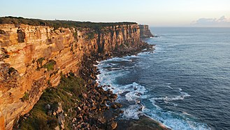 Sydney sandstone - Sandstone cliffs, Sydney Heads.