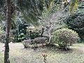 View near Udo Shrine.jpg