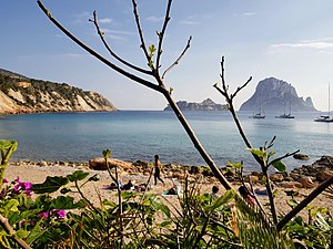 View of Es Vedrà from Cala D'hort and flowers.jpg