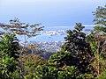 View of harbor from Mount Vaea Apia Samoa.jpg