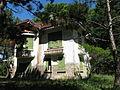 Villa 1, Palace I, 03.jpg