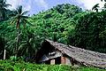 Village Nakamal (Imagicity 975).jpg