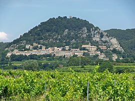 The village of Séguret and the vineyard