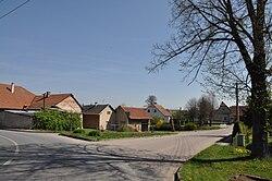 Vinary(okrÚstínO)2011.jpg