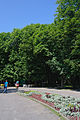 Vinnycia park Gorkogo.JPG