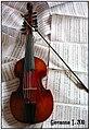 Viola d´amore by V. Santini 2011.jpg