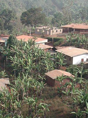 Bana, Cameroon - Image: Vue de Bana au Cameroun