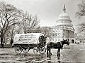 Wagon and the US Capitol.jpg
