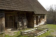 Wallachian Open Air Museum.jpg