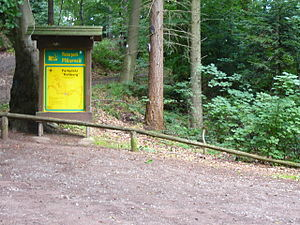Palatinate Forest - The Rehberg woodland car park from where there are several circular walks