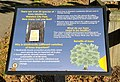 Warwick City Park interpretive sign.jpg