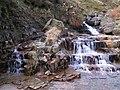 Waterfall, River Kinder - geograph.org.uk - 81064.jpg