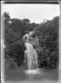Waterfall at Waikino. ATLIB 293156.png