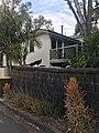 West End, Queensland 10 (turkey).jpg