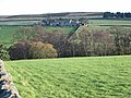 West Ruffside - geograph.org.uk - 282217.jpg