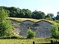 West Woodhay Down Chalk Pit - geograph.org.uk - 2213412.jpg