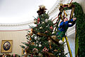 White House volunteers hang Christmas decorations in the Oval Office.jpg