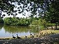 Wibsey Park Lake - geograph.org.uk - 16131.jpg