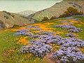 Wild Heliotrope and Poppies San Francisco by John Marshall Gamble.jpg
