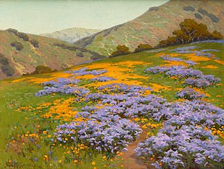 Wild Heliotrope and Poppies, San Francisco