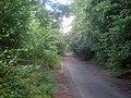 Willesley Wood Side - geograph.org.uk - 1500785.jpg