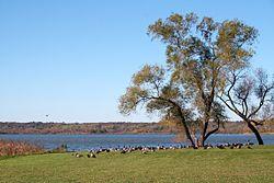 Wingra Park Madison If This Is What >> Lake Wingra Wikipedia