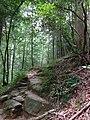 Winston County, AL, USA - panoramio (5).jpg