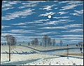 Winter Scene in Moonlight MET DT1541.jpg