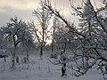 Winter morning in Lēdmane - panoramio.jpg