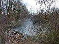 Winters Molsbroek - panoramio.jpg