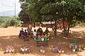 Women under tree selling onions and tomatoes.jpg