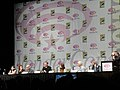 WonderCon 2011 - Priest 3D panel - Min-Woo Hyung, Paul Bettany, Lily Collins, Cam Gigandet, Scott Stewart (5593339649).jpg