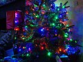Wraxall 2013 MMB 96 Christmas Tree.jpg