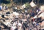 Wreckage of Flight 152 (1).jpg
