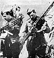 Ww richthofen guns 01.jpg