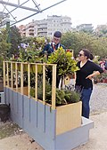 Young designers of gardens and balconies.jpg