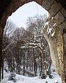 Zimowy widok z zamku w Ojcowie.jpg