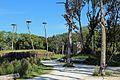Zwin Natuurpark R13.jpg