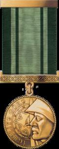 """""""İgidliyə görə"""" medalı.png"""