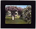 """Westlawn,"" Edward Tiffany Dyer house, Great Plains Road, Southampton, New York. LOC 7221367334.jpg"