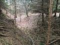 Überreste der Abschnittsbefestigung Puch 01.jpg