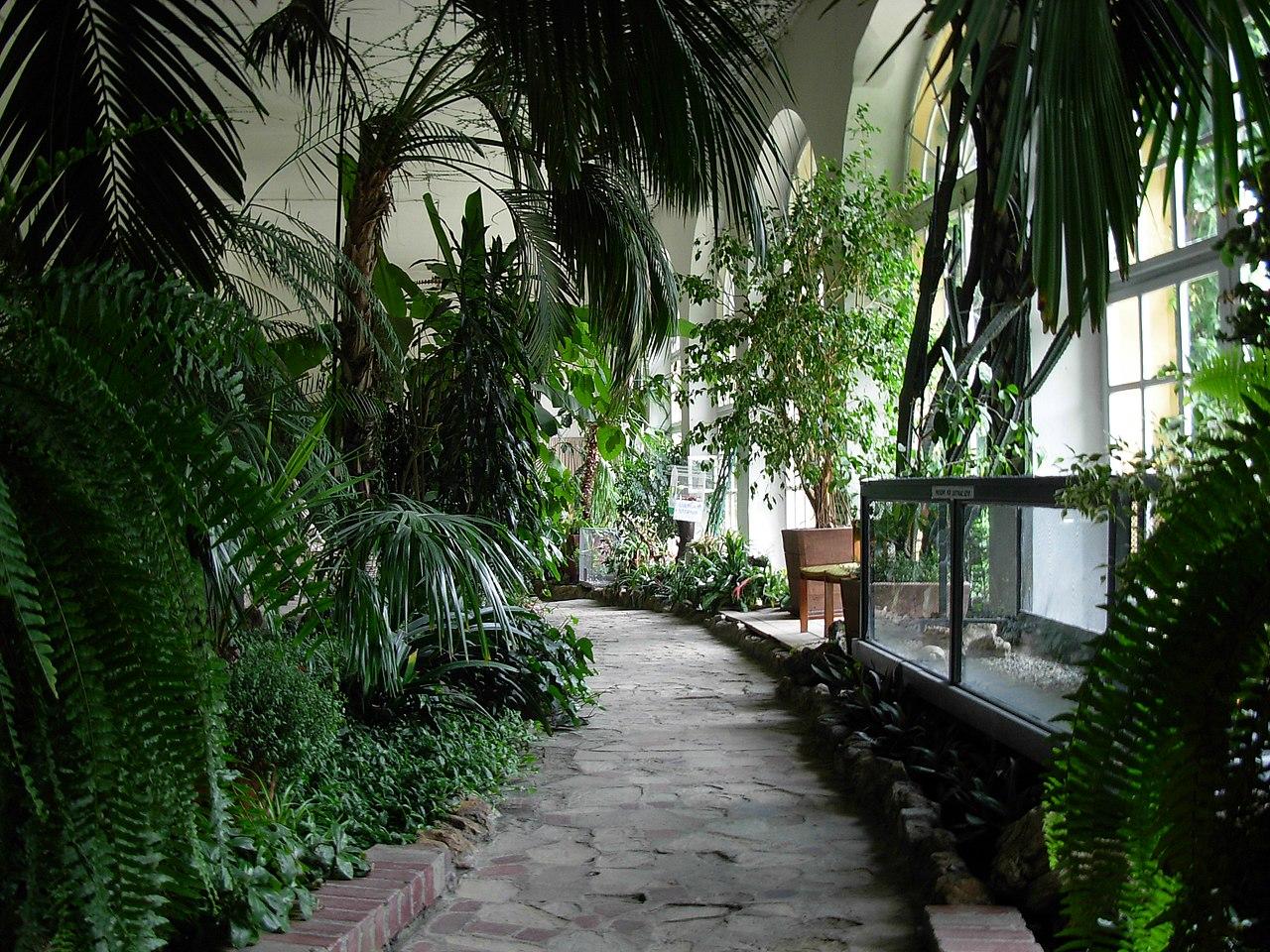 Ланьцутский дворец - ботанический сад.JPG