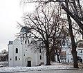 Багатовіковий дуб у місті Чернігові.jpg