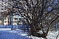 Детская спортивная площадка на Заречанской. Фото 4.jpg