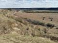 Долина реки Сылва 3.jpg