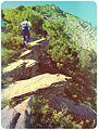 Идём на вершину=) - panoramio.jpg