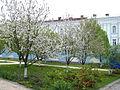 Михайлівський монастир 2.jpg