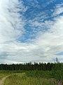 Облака - panoramio (7).jpg