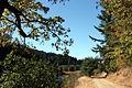 Осень. Oct. 6, 2007 - panoramio.jpg
