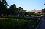 Парк имени Горького в Москве. Фото 27.jpg